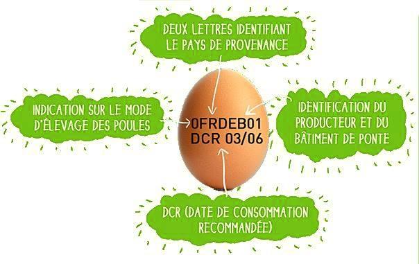 étiquetage de l' œuf